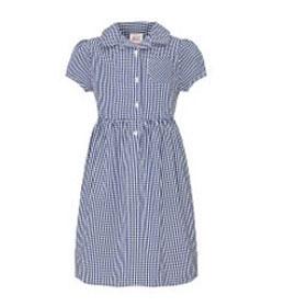 Concordia Academy Navy gingham school dress
