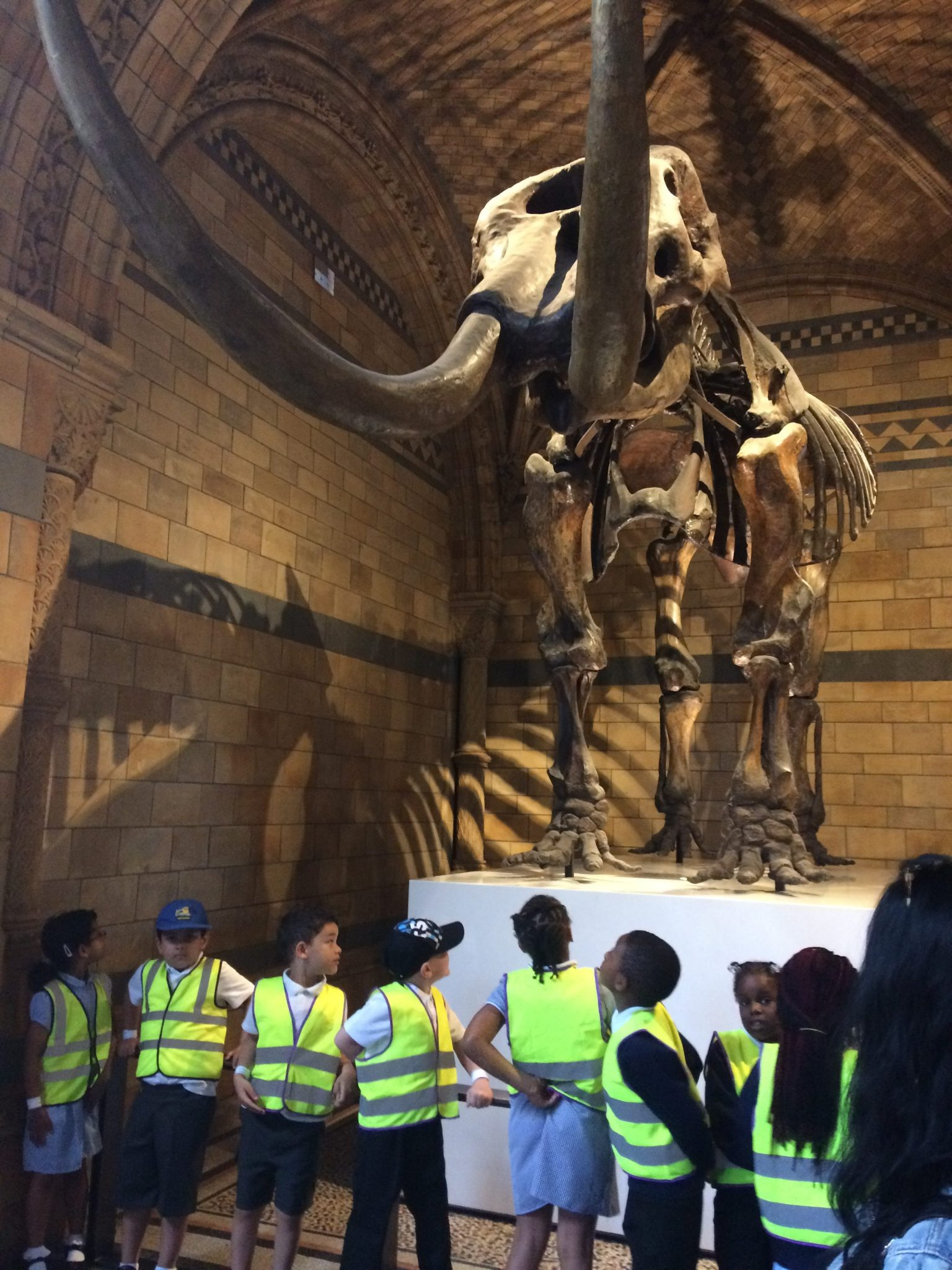 Year 1 Trip – Natural History Museum 08.05.18